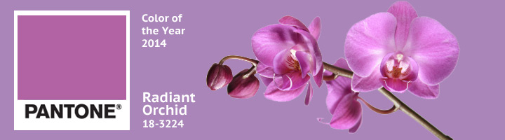Trendfarbe 2014: Radiant Orchid