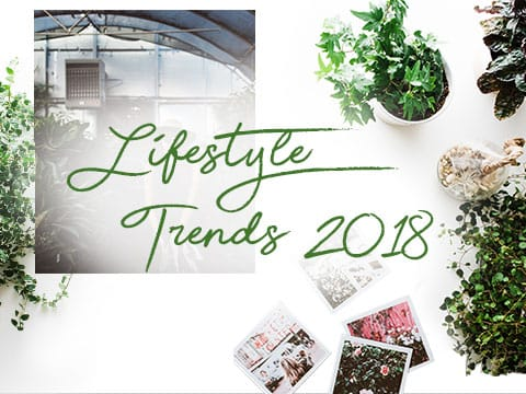 Lifestyle Trends 2018