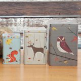 Magpie Dosen Forest Friends 3er-Set eckig