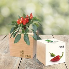 Feel Green EcoCube Chili
