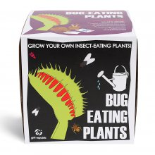 Pflanz-Set Bug-Eating-Plants