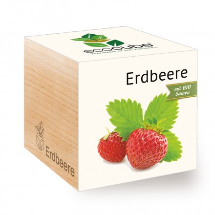 Feel Green EcoCube Erdbeere