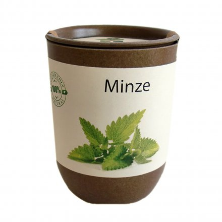 Feel Green EcoCan Minze