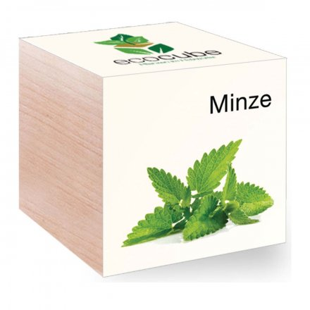 Feel Green EcoCube Minze