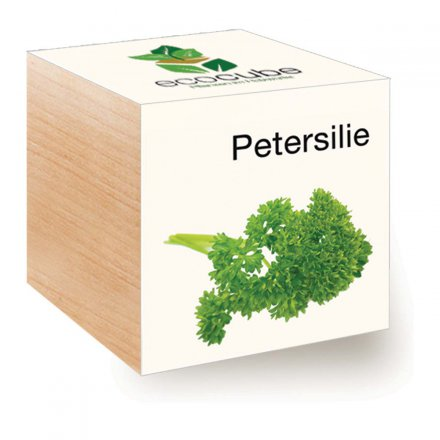 Feel Green EcoCube Petersilie