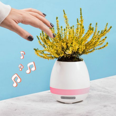 Thumbs Up LED Flower Pot mit Bluetooth Lautsprecher