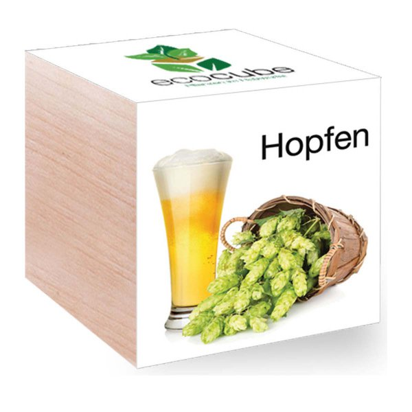 Feel Green EcoCube Hopfen
