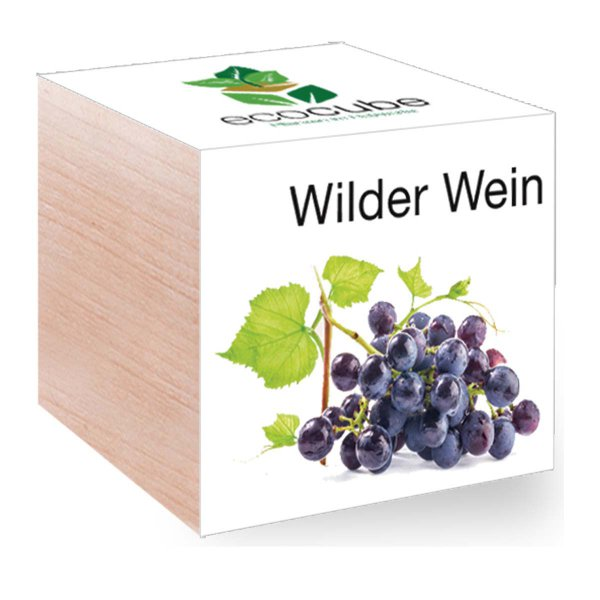 Feel Green EcoCube Wilder Wein