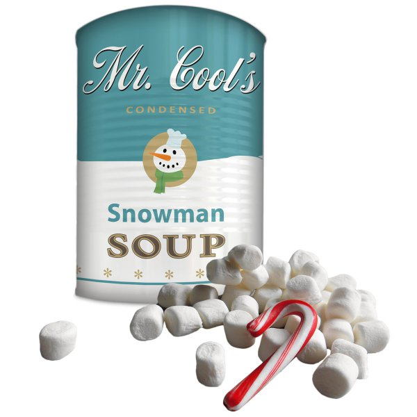Mr. Cools Condensed Snowman Soup