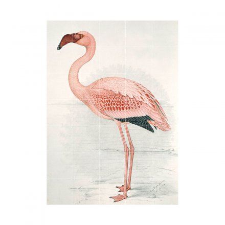 IXXI Wanddekoration Greater Flamingo large