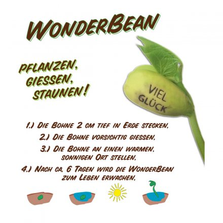 Feel Green WonderBean Hab dich lieb