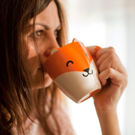 Thumbs Up Tasse Fox Mug